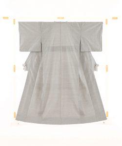 恵大島織物製 大島紬真綿蚊絣のメイン画像