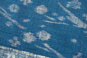 青戸柚美江作 出雲織単衣着物「春光」のサブ4画像