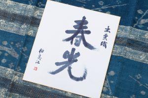 青戸柚美江作 出雲織単衣着物「春光」のサブ5画像