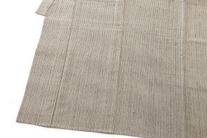 ざざんざ織 単衣男着物のサブ2画像