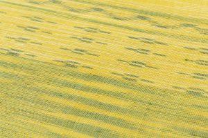 八重山上布 名古屋帯のサブ3画像